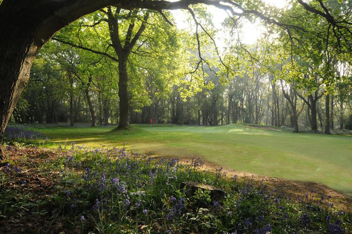 5th green, Chesham and Ley Hill Golf Course