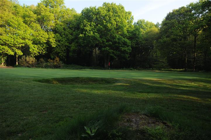 7th Green, Ley Hill Golf Club